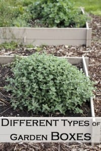 Different Types of Garden Boxes