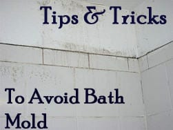 how to avoid bathroom mold how to build it