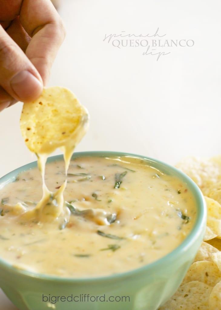 queso-blanco-white-cheese-dip-recipe-super-bowl-appetizer-13-730x1024