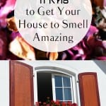 Smell hacks, cleaning hacks, popular pin, cleaning hacks, organization, DIY organization, smell tips, clean home, organized home.