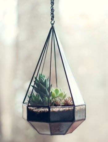 These adorable DIY terrariums are so cute and you will love the way they look in your home. This hanging glass terrarium is my favorite!