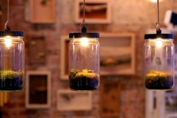 These adorable DIY terrariums are so cute and you will love the way they look in your home. These pendant lamp terrariums are my favorite!