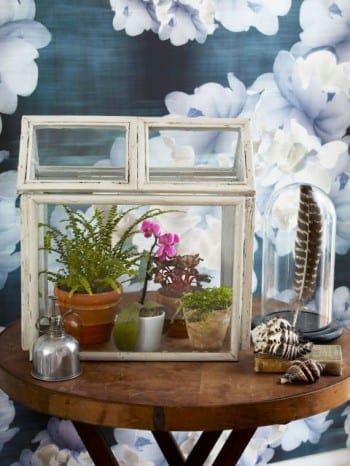 These adorable DIY terrariums are so cute and you will love the way they look in your home. This terrarium house is my favorite!