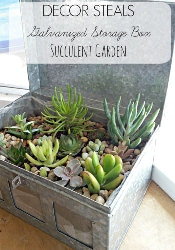 10 Succulent Themed Craft Projects