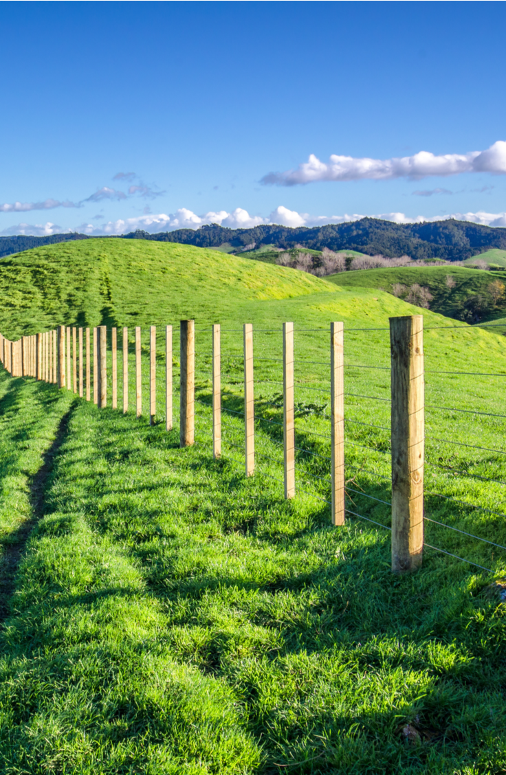 Do you want to set posts in your yard but you don't want to use concrete? It's possible! Use this guide to learn how to set posts without concrete.