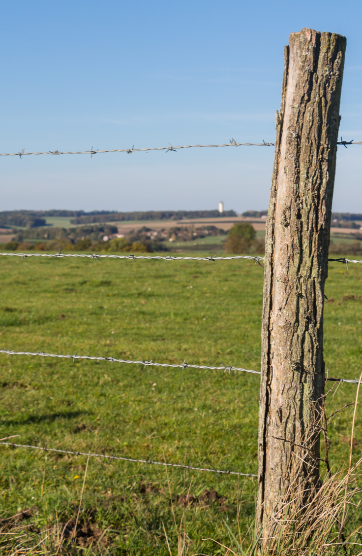 Setting posts can be hard and expensive. Use this guide to learn how to set posts without concrete to help you save money.