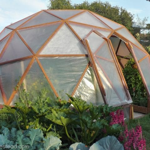 Build Your Own Greenhouse for Winter Gardening| Gardening, DIY Greenhouse, DIY Greenhouse Projects, Winter Gardening, Winter Gardening Tips #DIYGreenhouse #DIY #Gardening