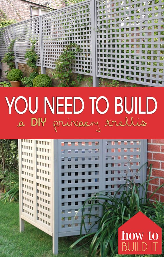 You Need to Build a DIY Privacy Trellis| Privacy Trellis, DIY Home, How to Create Backyard Privacy, DIY Outdoor, Outdoor Landscaping #DIYPrivacyTrellis #DIYHome