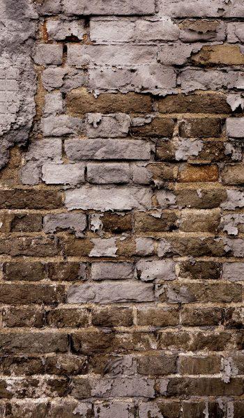 How to Remove Plaster from Brick  Remove Plaster, Remove Plaster Brick, Brick Wall, Brick Wall Interior, Brick Wall Decor