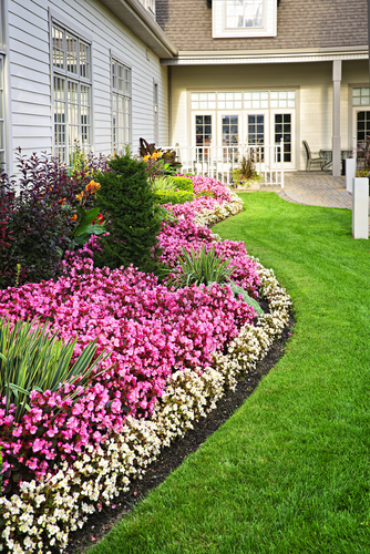DIY Lawn Edging Ideas for lots of Curb Appeal | DIY Lawn Edging | Lawn Care Tips and Tricks | Yard | Curb Appeal | DIY Curb Appeal | Lawn Care Hacks