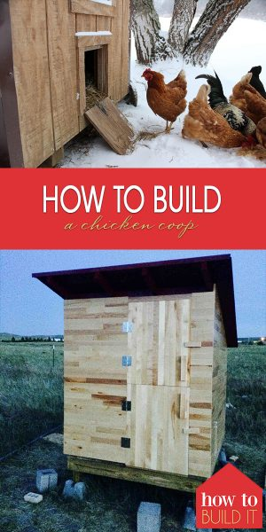 Build a Chicken Coop | How to Build a Chicken Coop | DIY Chicken Coop | DIY Chicken Coop Tuturial | Chicken Coop