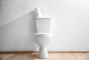 Paint Behind a Toilet   Space Behind a Toilet   Tips and Tricks to Paint Behind a Toilet   Paint   Paint Hacks   Painting Tips and Tricks   Learn How to Paint Behind a Toilet