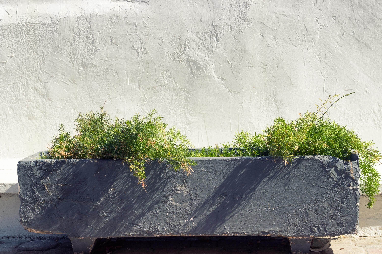 home exterior ideas | home exteriors | exterior ideas | home design | design | exterior design
