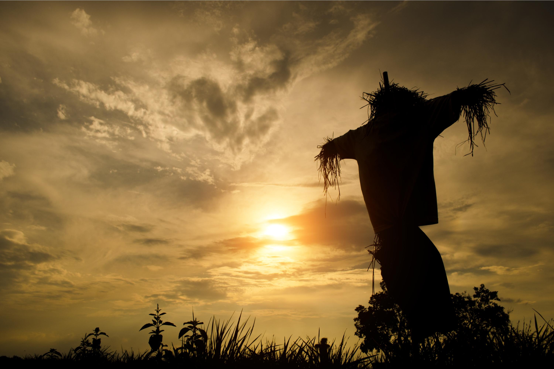 diy scarecrow | diy | scarecrow | fall | diy fall projects | fall projects | diy projects