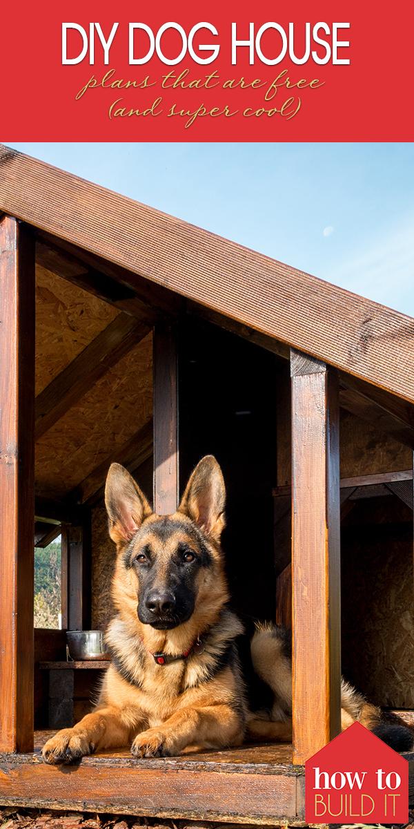 DIY dog house   DIY   dog house   DIY project   easy DIY dog house   dog house tutorial   how to
