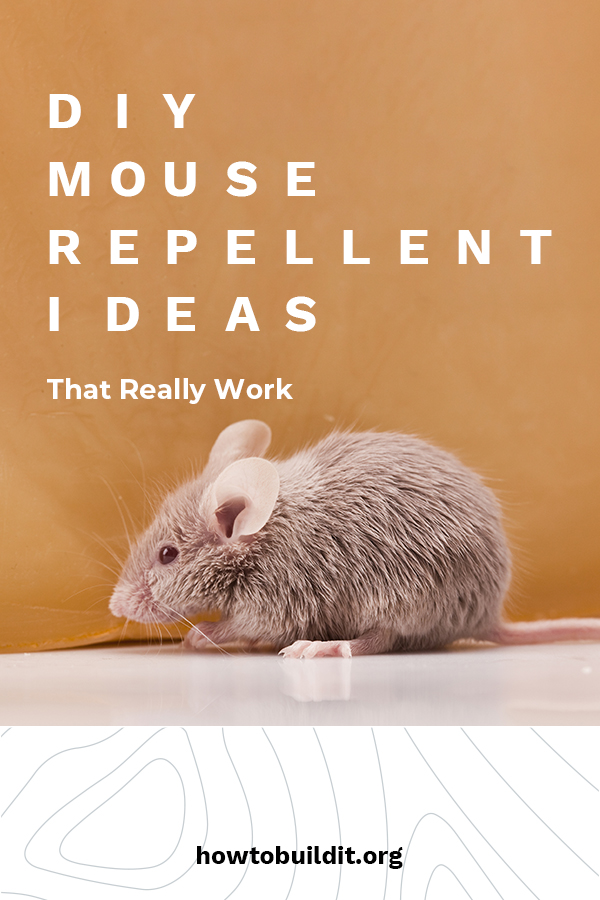 Mickey and Minnie are great, but your house isn't Disneyland. Mice can be a serious problem. Afraid of chemicals or traps that your pets or kids can get into? No worries because How To Build It is talking about DIY mouse repellent that really works. It's easy to make and is safe. Keep the mice away with these quick DIY repellent ideas. Take a look!