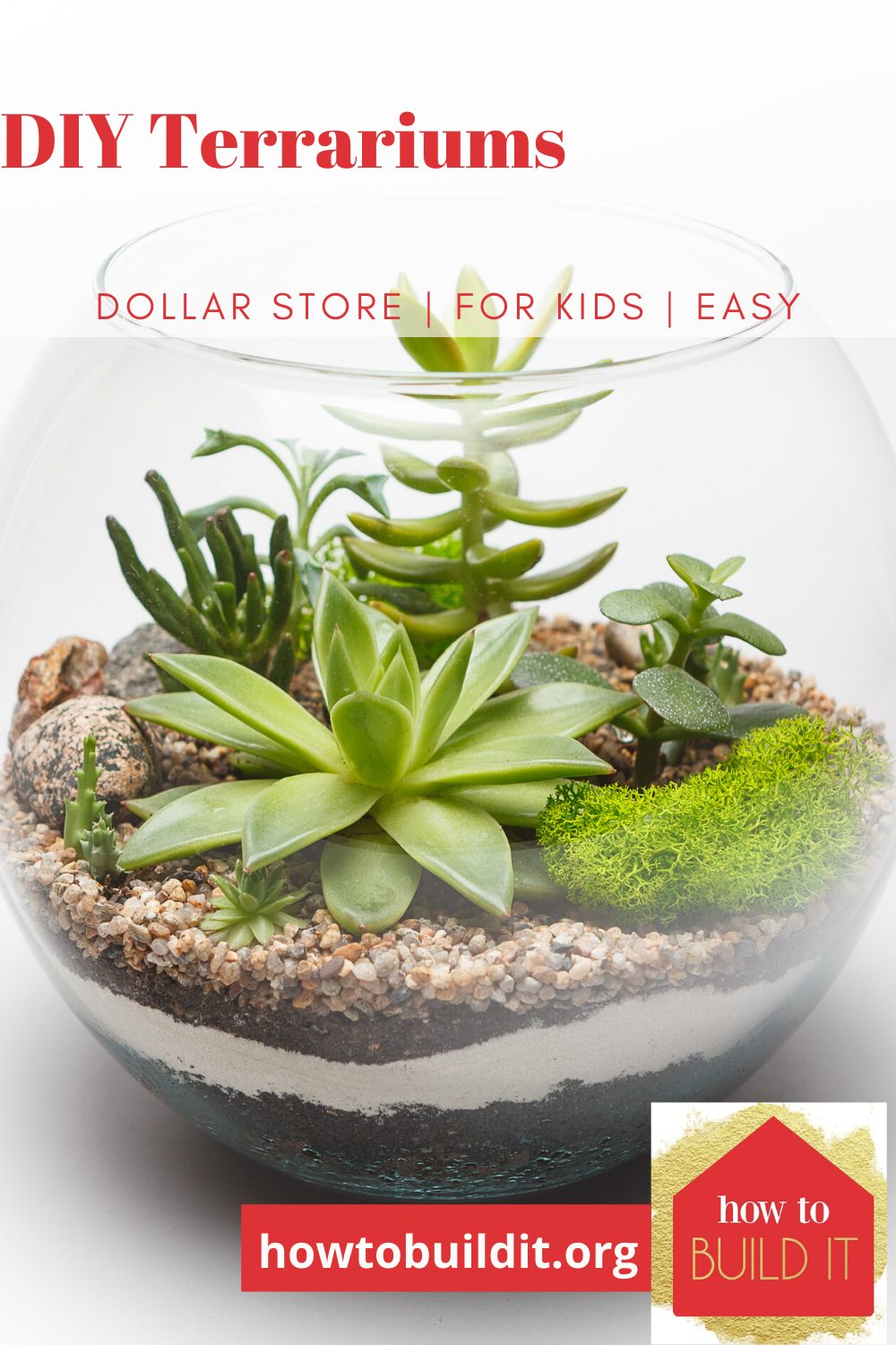 Make your own DIY terrarium and save big. I'll show you how! It's easy and it's a blast! #howtobuilditblog #terrariums #diyterrariums